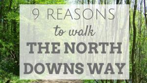 9 reasons to walk the north downs way