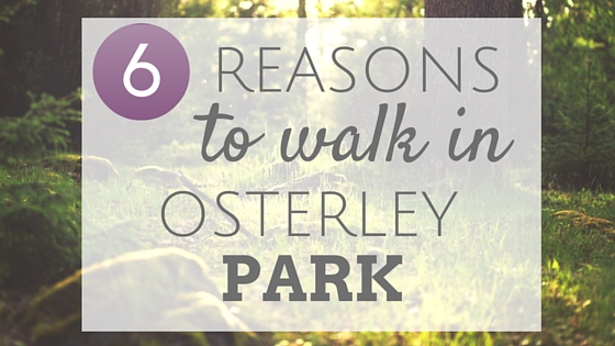 6 reasons to walk in Osterley Park